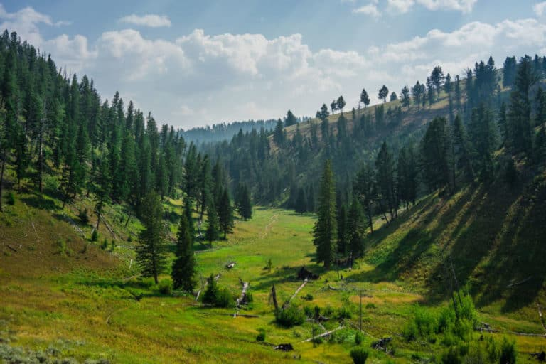13 BEST Things To Do In Yellowstone National Park On Your 1st Visit!