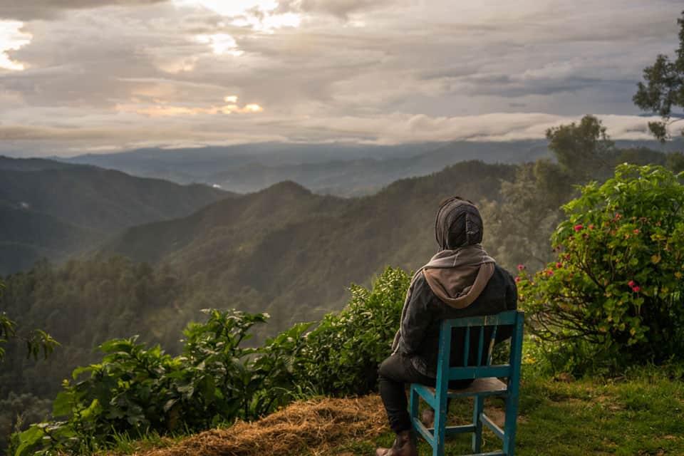 Discover San Jose Del Pacifico, Oaxaca: Magic Mushrooms & More!