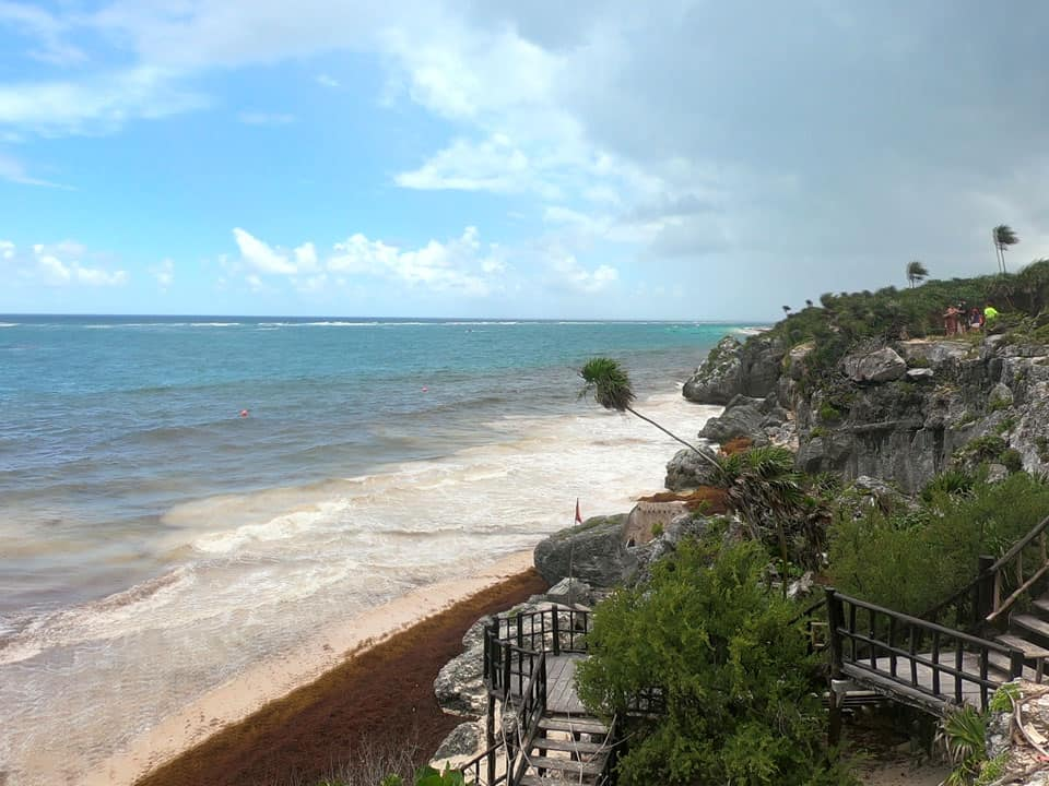 Tulum-Mexico seaweed