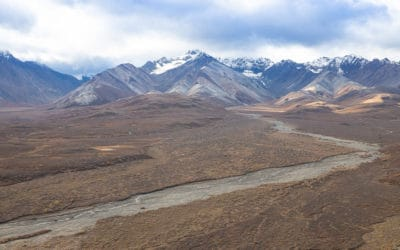 6 TOP Things to Do in Denali National Park