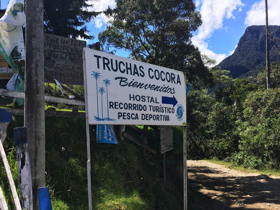 Cocora-Valley-4