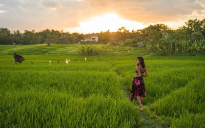 The PERFECT 10-Day Bali Itinerary: 10 Days of Paradise