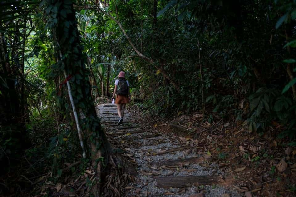 KL-Eco-Forest-Park-2-days-KL-itinerary
