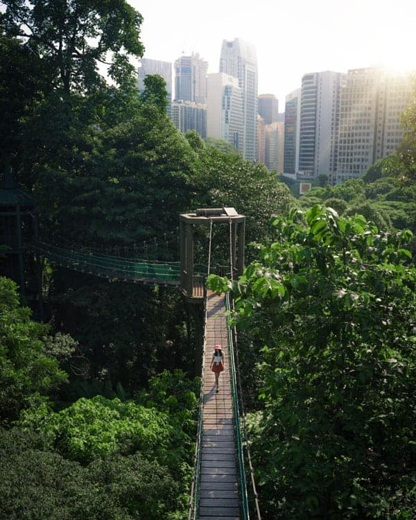 KL-Eco-Forest-Park-Canopy-Walk