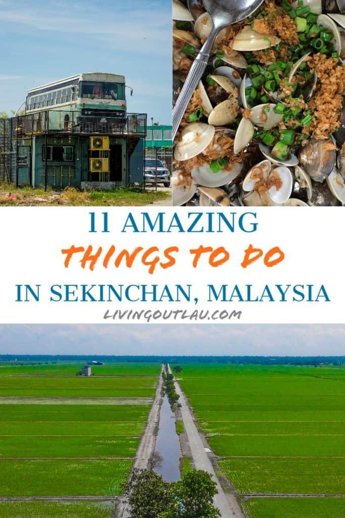 Things To Do in Sekinchan Pinterest