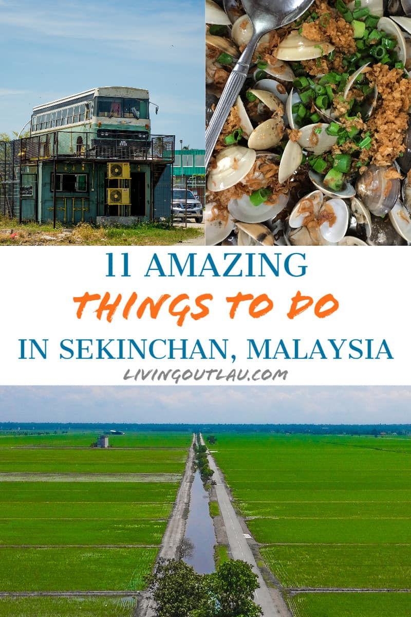 Things To Do in Sekinchan Pinterest