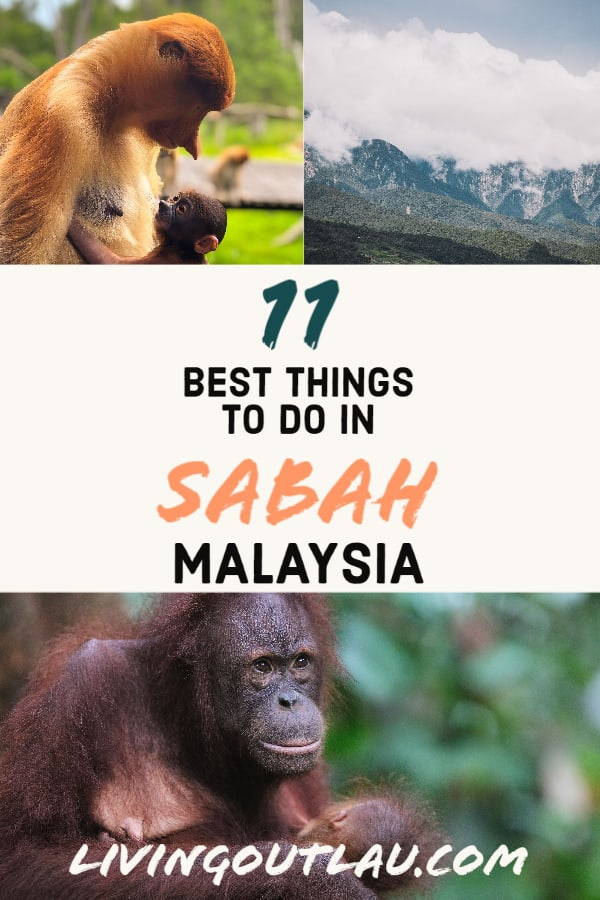Things-To-Do-in-Sabah-Malaysia-Pinterest