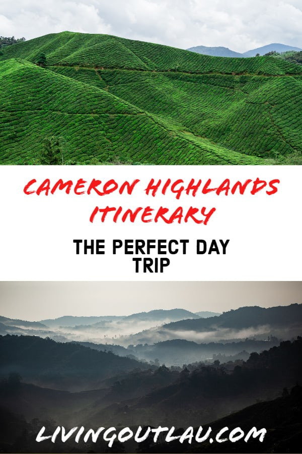 Cameron-highlands-day-trip
