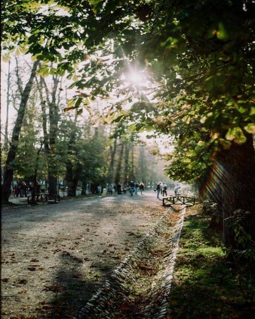 Cluj Napoca Central Park