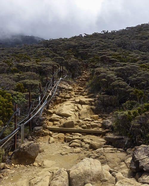 Mount-Kinabalu-guide