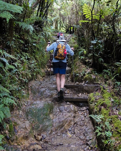 Start-of-Mount-Kinabalu-Hike