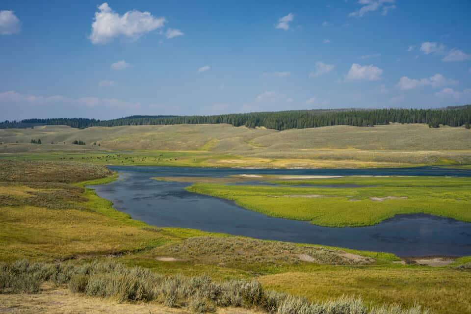Hayden-Valley-Yellowstone