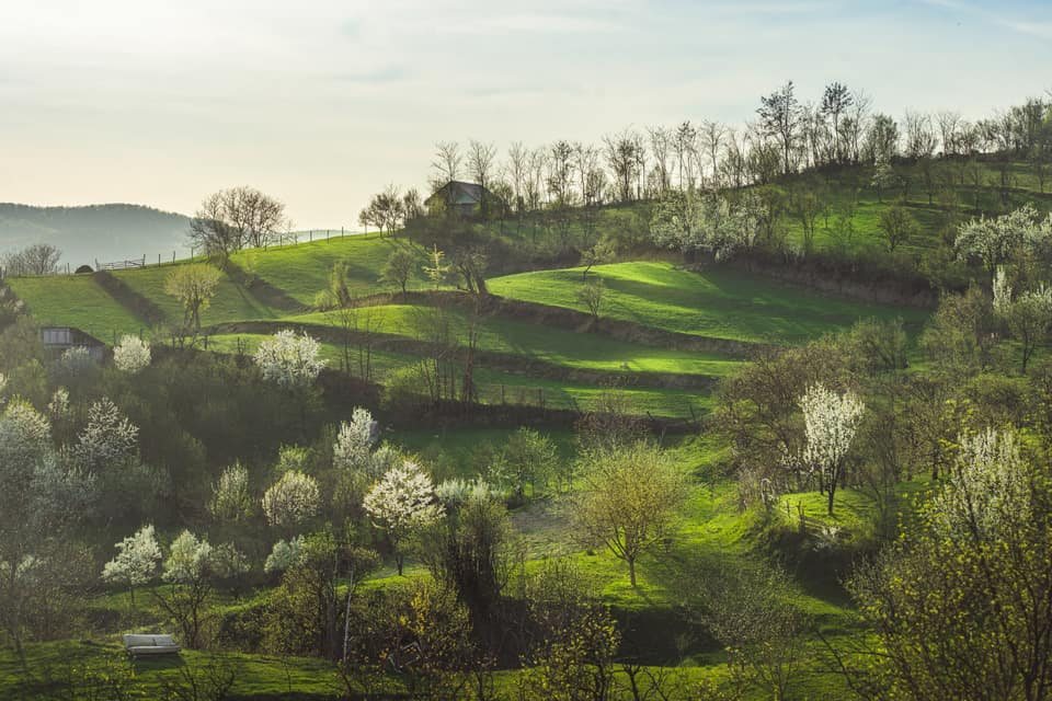 Spring-In-Romania