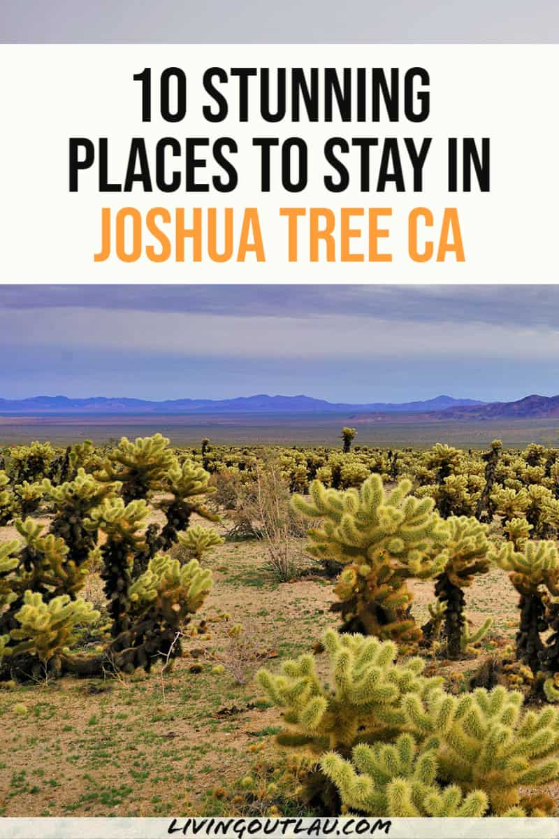 Joshua Tree Airbnb Pinterest