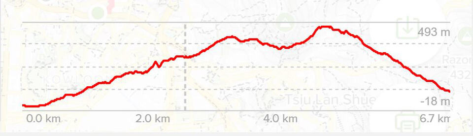 Lion Rock Hike Elevation Profile