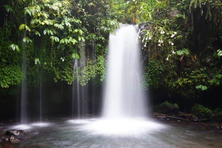 10+ BEST Bali Waterfalls! (2021 Update)