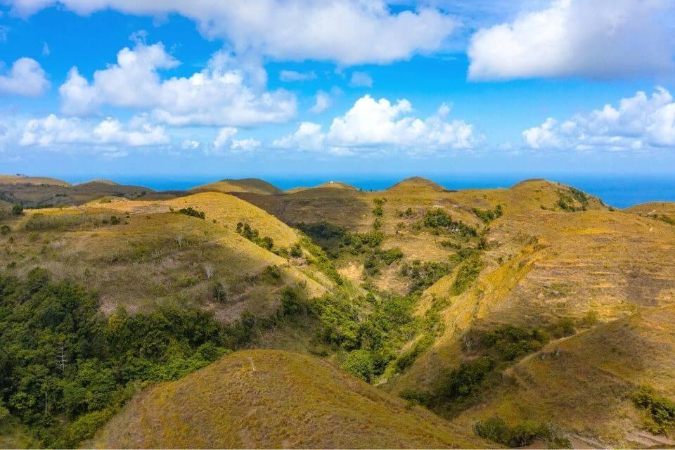 Teletubbies Hill Treehouse Nusa Penida
