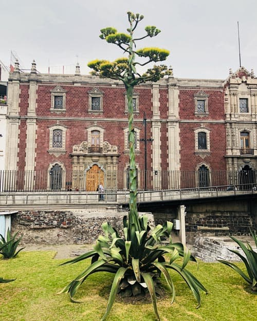 Templo Mayor Mexico City Aztecs
