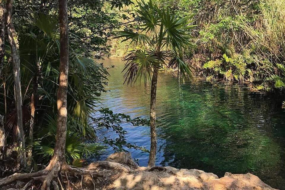 Cenote Escondido Tulum Mexico
