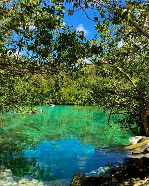 Open Cenote Mexico