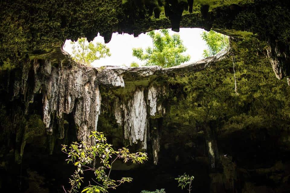 Semi Open Cenote Yucatan Mexico