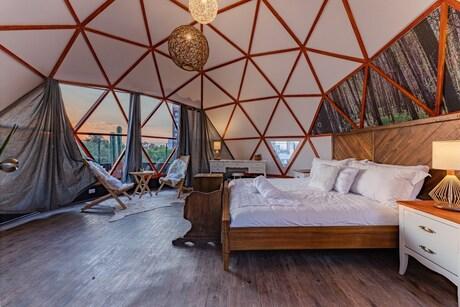 Unique Airbnbs In Mexico City