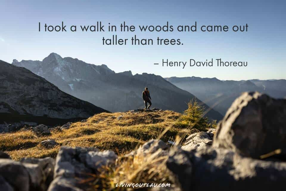 Hiking In Nature Quotes