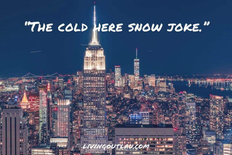 NYC Puns Captions