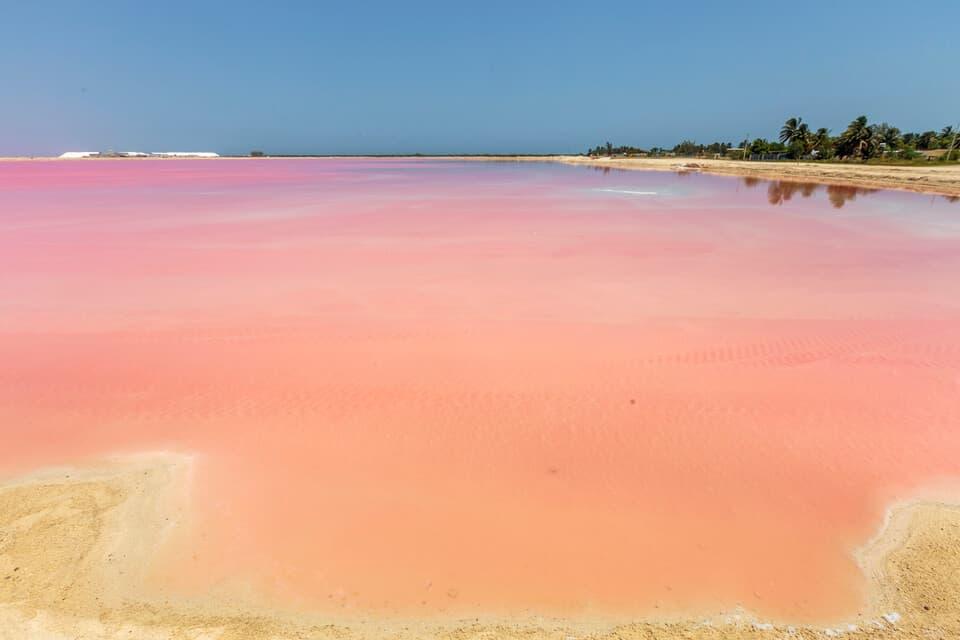 Las coloradas Yucatan Peninsula Activities